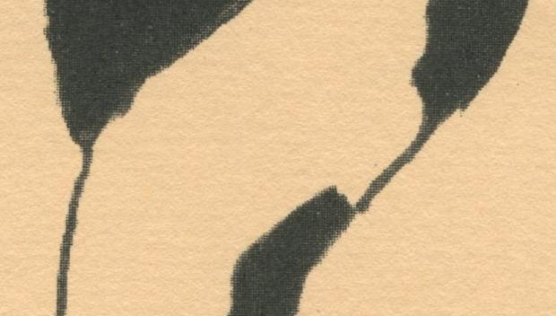 pastel-paper-type-2